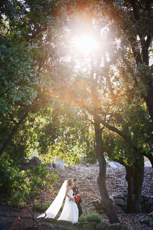 Alison Yin Wedding Photography - Napa Valley