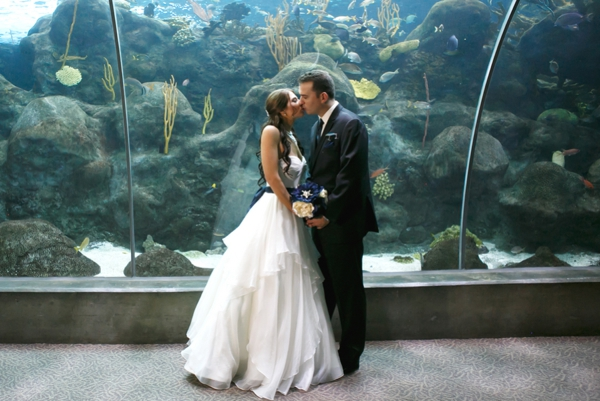 SomethingTurquoise_DIY_aquarium_wedding_Carrie_Wildes_Photography_0001.jpg