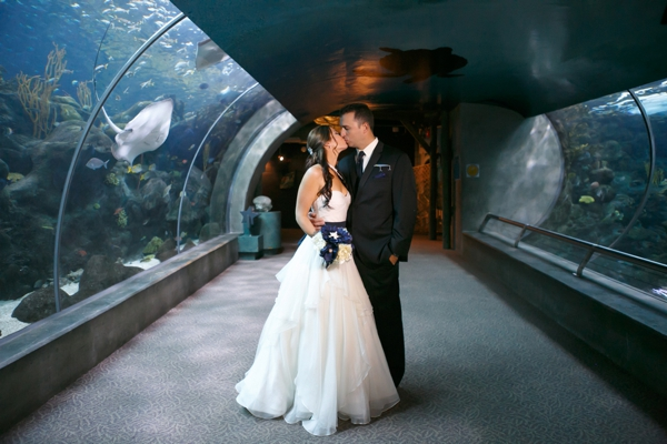 SomethingTurquoise_DIY_aquarium_wedding_Carrie_Wildes_Photography_0010.jpg