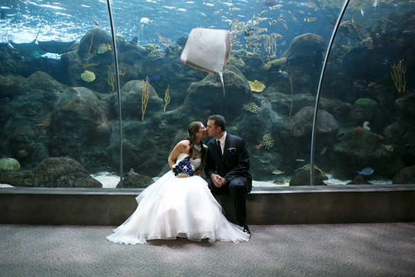 SomethingTurquoise_DIY_aquarium_wedding_Carrie_Wildes_Photography_0012.jpg