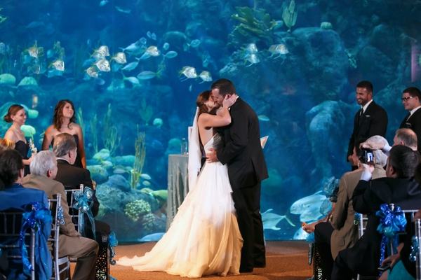 SomethingTurquoise_DIY_aquarium_wedding_Carrie_Wildes_Photography_0018.jpg
