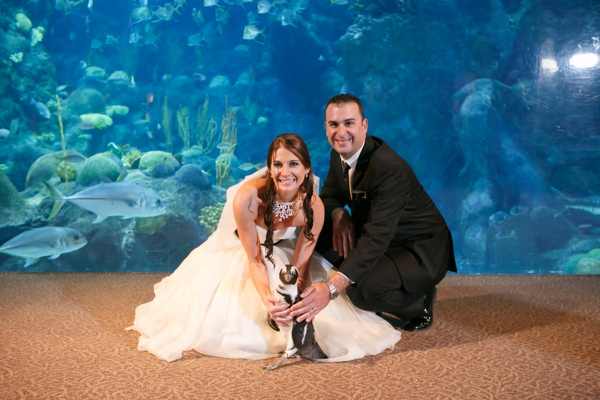 SomethingTurquoise_DIY_aquarium_wedding_Carrie_Wildes_Photography_0020.jpg