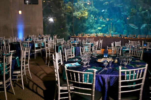 SomethingTurquoise_DIY_aquarium_wedding_Carrie_Wildes_Photography_0030.jpg