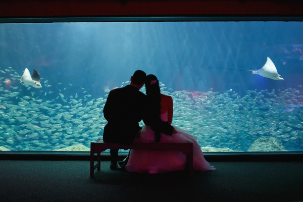 SomethingTurquoise_DIY_aquarium_wedding_Carrie_Wildes_Photography_0041.jpg