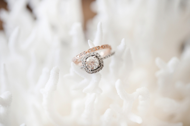 Stunning wedding ring shot on coral