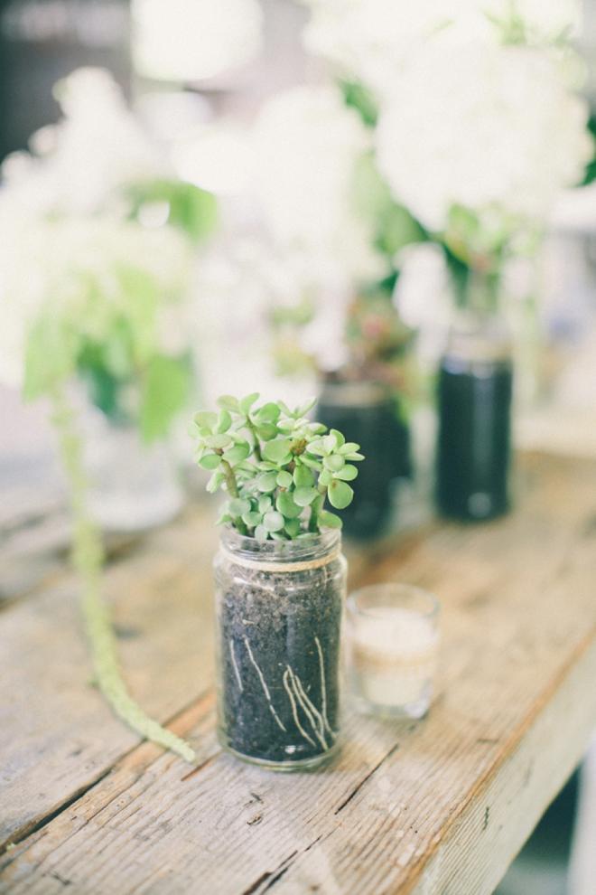 Succulent wedding decor
