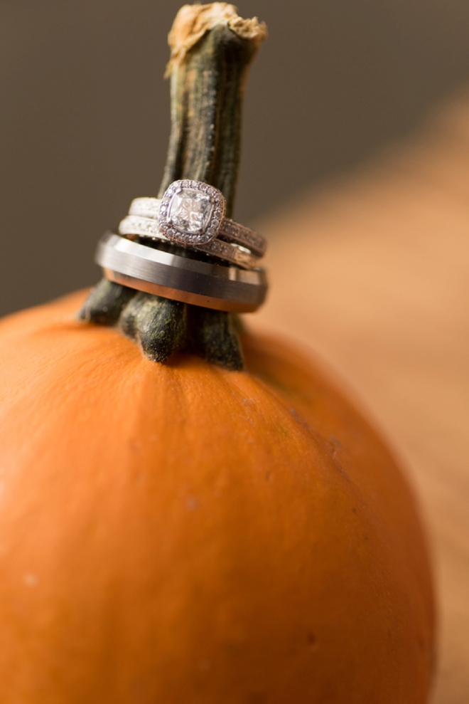Wedding rings on a pumpkin
