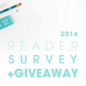 Something Turquoise reader survey 2014