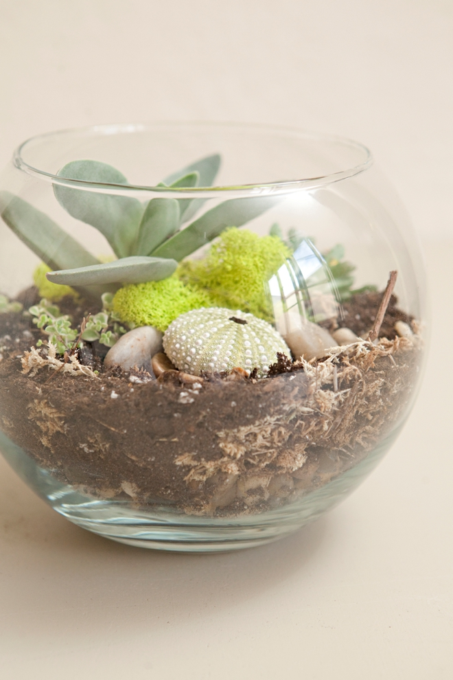 DIY Wedding Terrariums