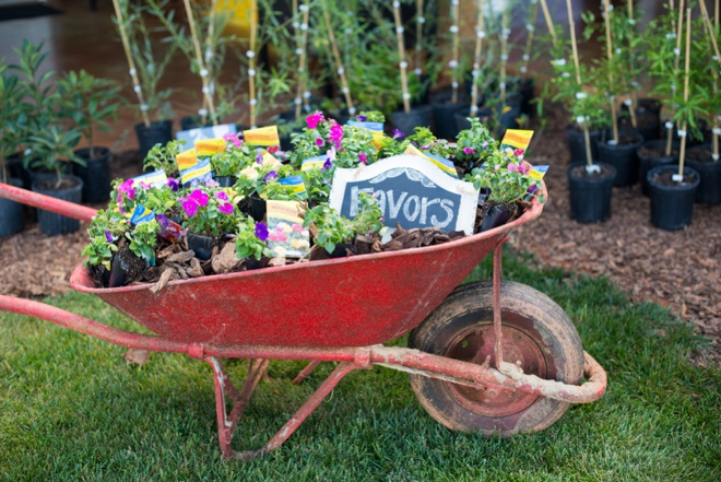 AMAZING tree + flower wedding favors!