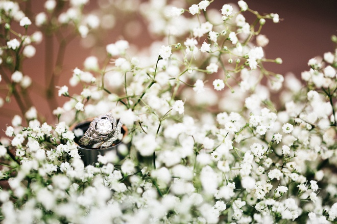 Wedding Rings in baby's breath