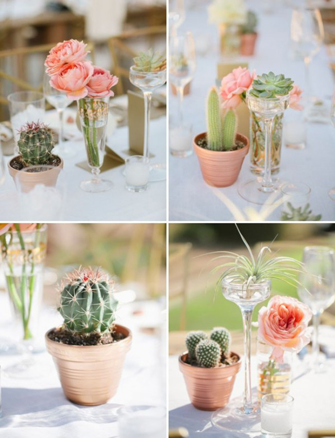 Adorable mini-cacti wedding centerpieces!