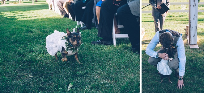 How adorable is this flower pup photo?! Loving this idea!