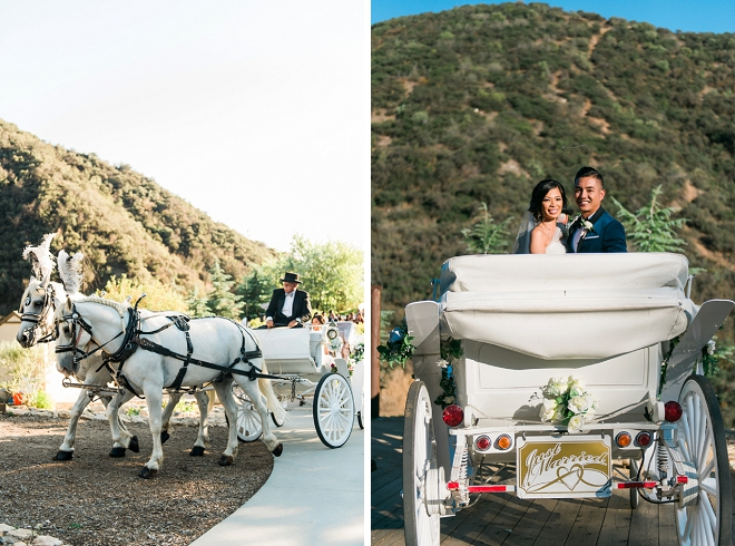 Loving that the Bride and Groom rode away from their ceremony by horse and carriage! So romantic!