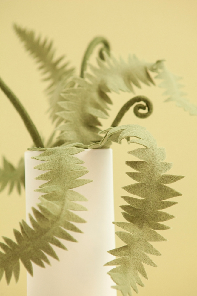 How to make the most awesome felt fern leaves and fiddleheads!