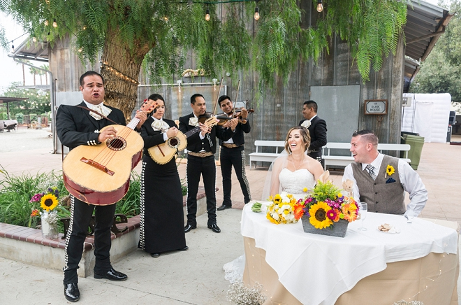How hilarious is this mariachi band performing at this couple's wedding? So fun!