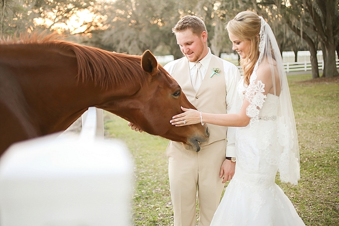 We love weddings with horses! Check out this darling Mr. and Mrs. and their stunning rustic wedding!