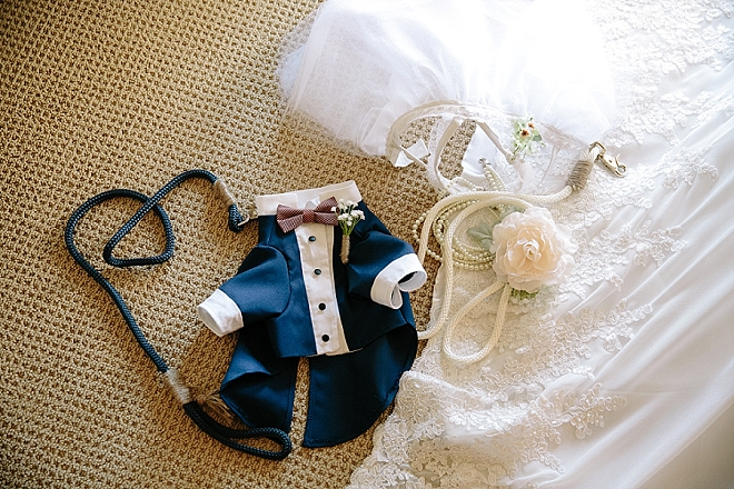 Eek! How darling are these handmade pup ceremony outfits?! LOVE!