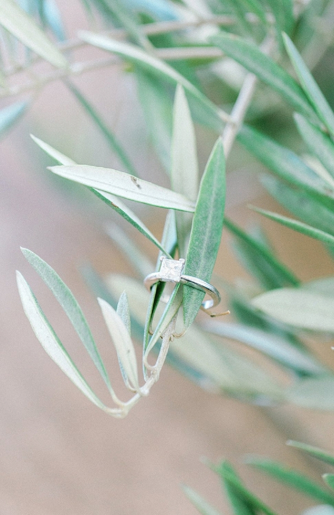 Loving this eucalyptus ring shot! So delicate + gorgeous!