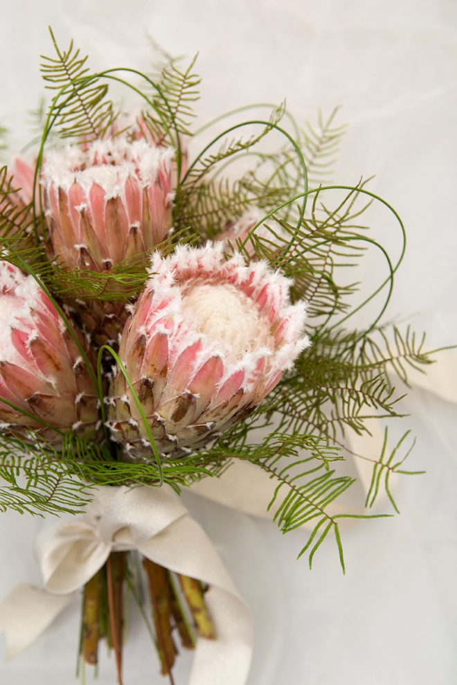 Wedding Flower Power // The Unparalleled Protea