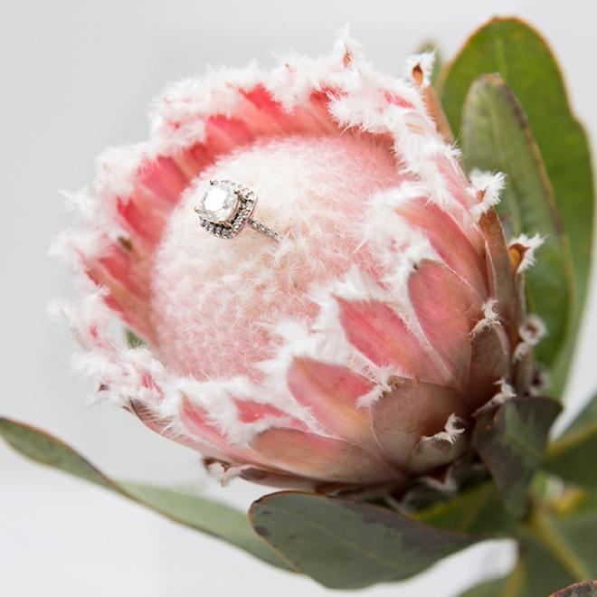 Protea Wedding Flowers: Wedding Flower Power // The Unparalleled Protea