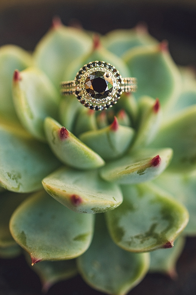 Swooning over this black diamond ring shot!!