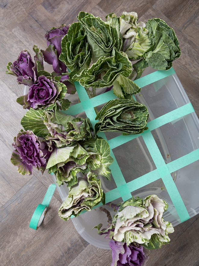 Fresh, farm kale is a wonderful addition to any natural themed wedding!