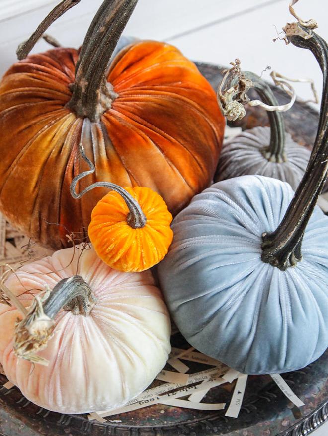Velvet pumpkins by The Velvet Window