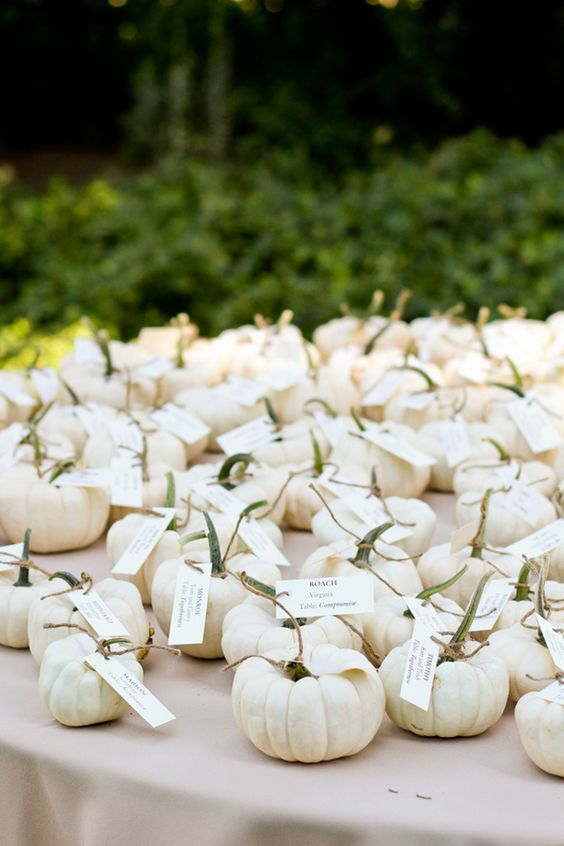 Mini white pumpkins for a fall wedding. These would be great as favors.