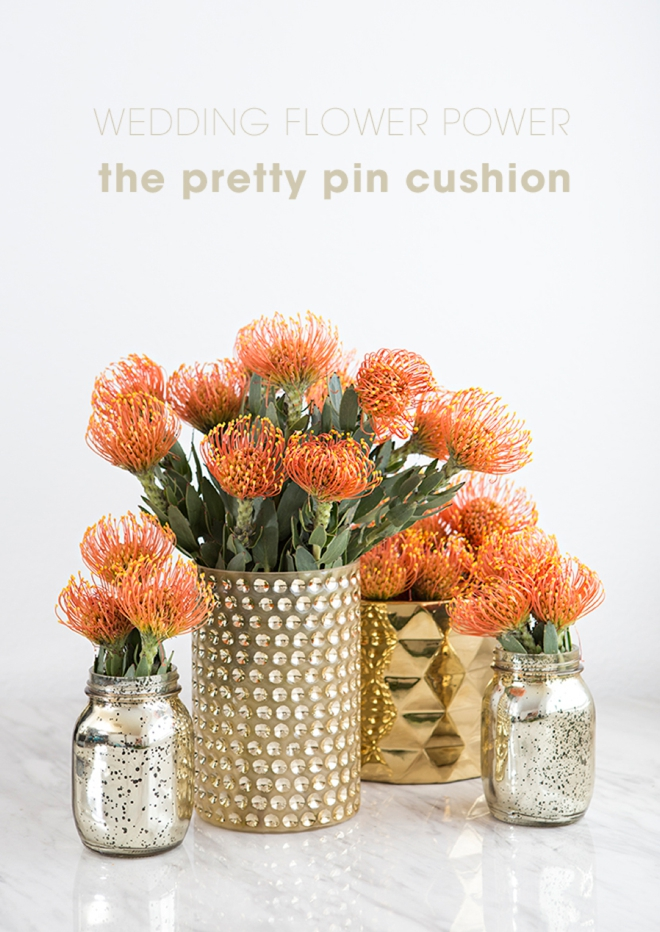 These pin cushion flowers would be amazing for your wedding!