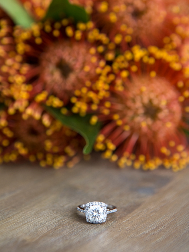Gorgeous wedding ring shot in front of pin cushion protea flowers!