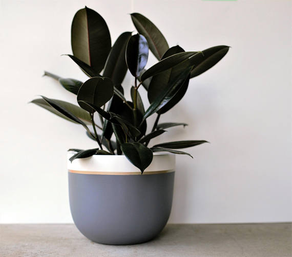 This modern painted pot is the perfect holiday gift!