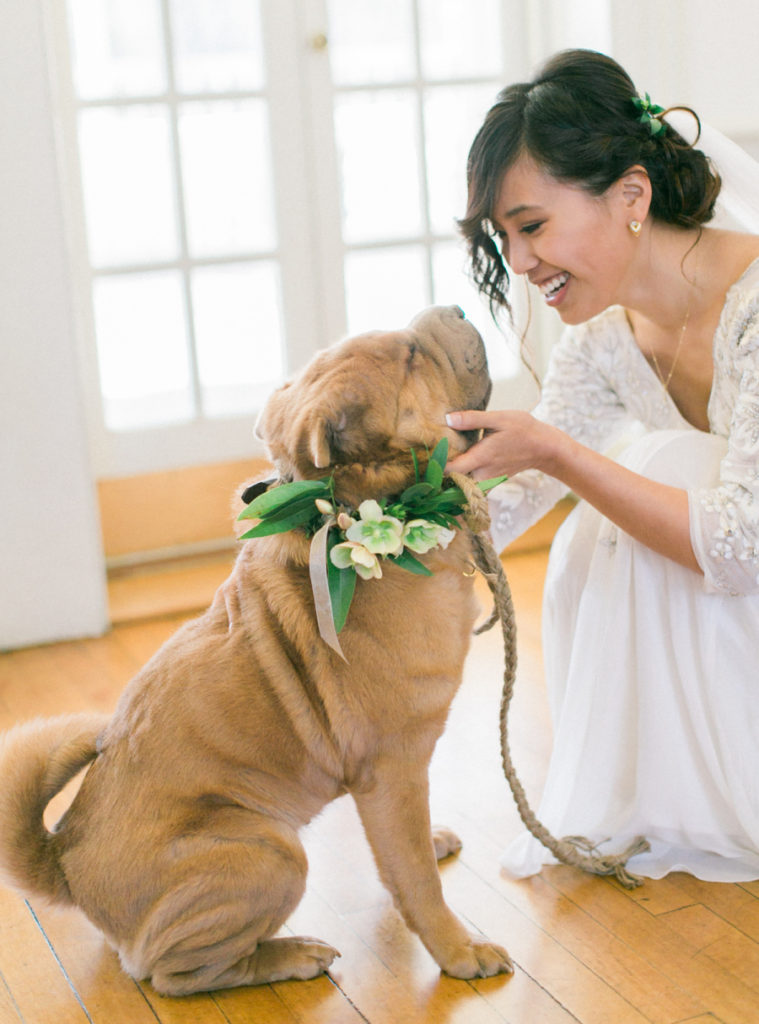 Look at this bride and her shar-pei! I want to have my dog at my wedding.
