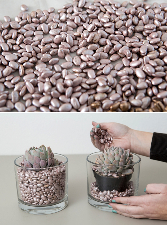spray paint beans for cheap and colorful vase filler!