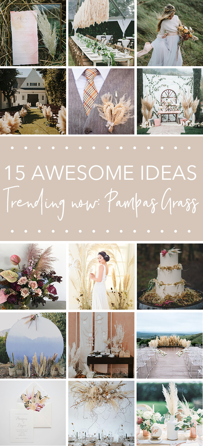 Check out all our ideas for one of our favorite trends, pampas grass
