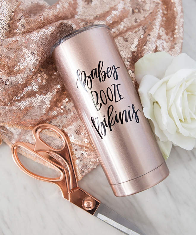 Babes, Booze, Bikinis tumbler by Something Turquoise