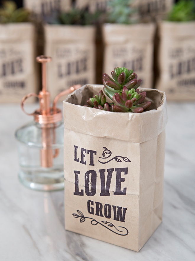 FREE printable Let Love Grow design to make your own succulent wedding favors!