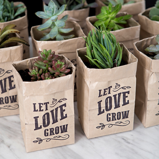 "OMG, These DIY ""Let Love Grow"" Succulent Wedding Favors"