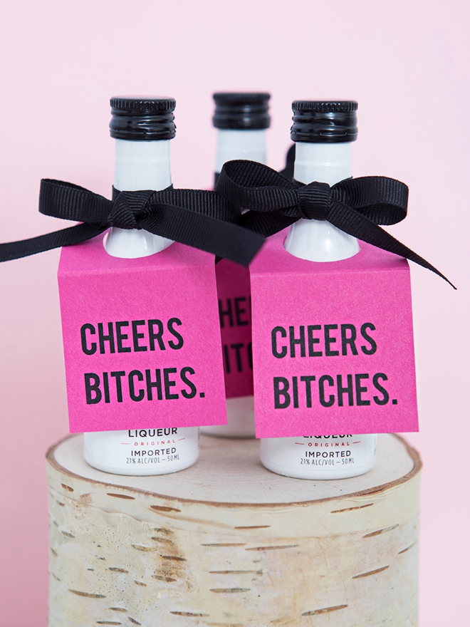Cheers Bitches, Mini Alcohol Bottle Tags!