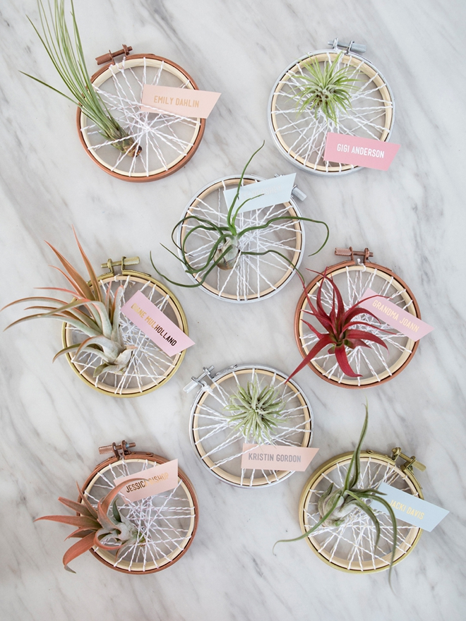 Learn how to make your own air plant favors that double as seating cards!
