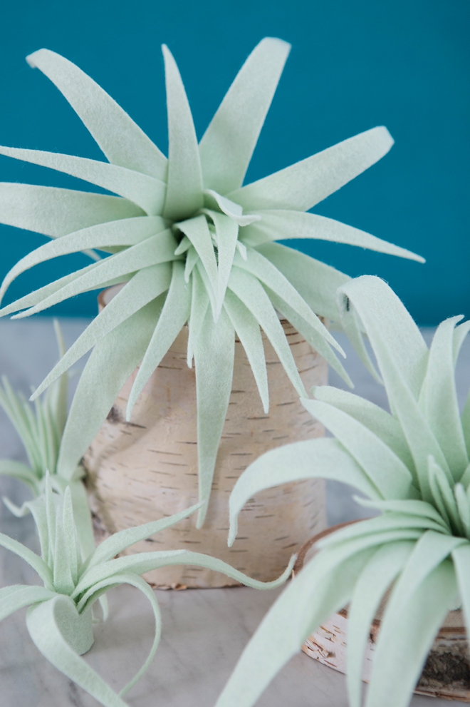 These are the most amazing handmade felt air plants!