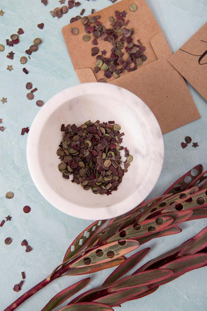 DIY leaf confetti using a hole punch and Leucadendron leaves!