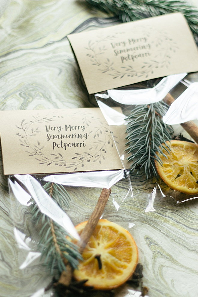 We've got Christmas Spirit with this DIY potpourri tutorial!