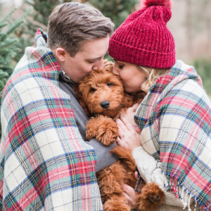 We are OBSESSED with this adorable couple and pup at their styled holiday engagement!