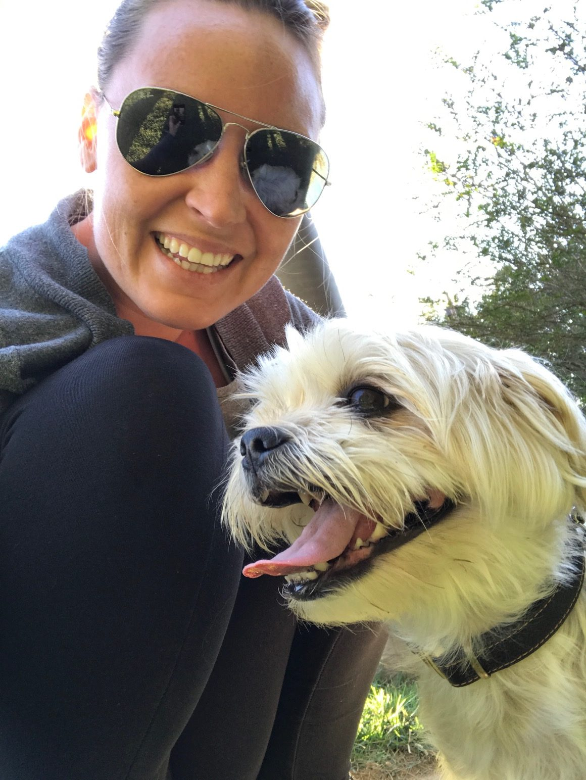 Don't miss Shea's top tips for traveling with your pups!