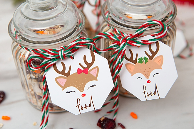 Make your own magic reindeer food for Christmas eve
