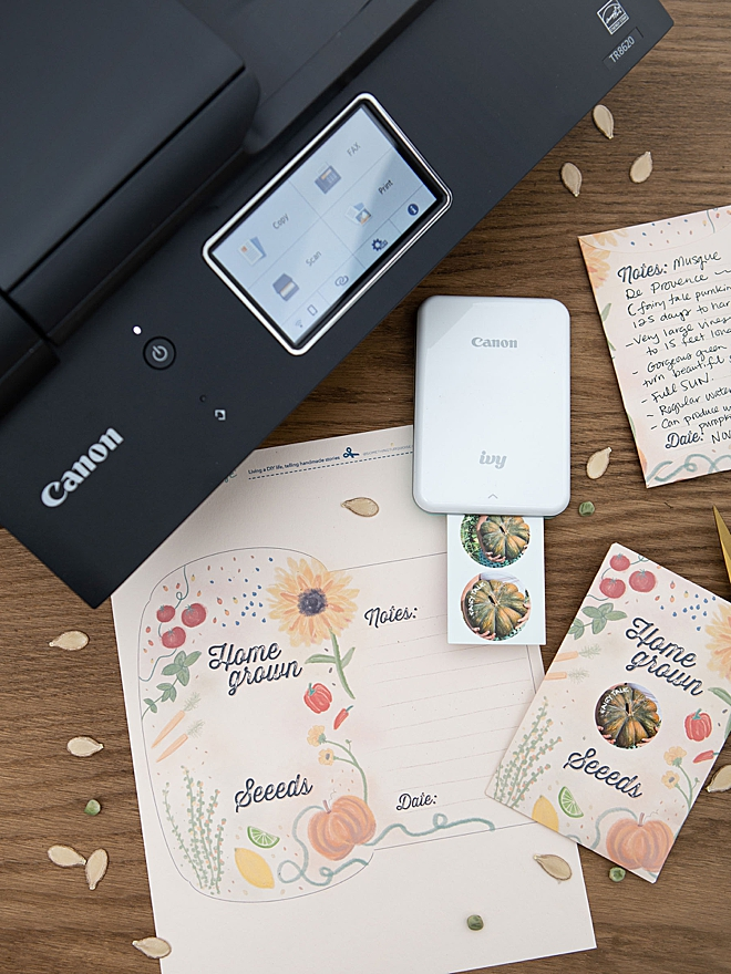 We used our Canon PIXMA TR8620 and our Canon IVY mini photo printer to make these seed packets so cute!