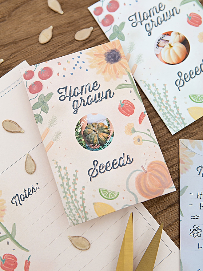 Adorable and free, homegrown seed packet printable design!