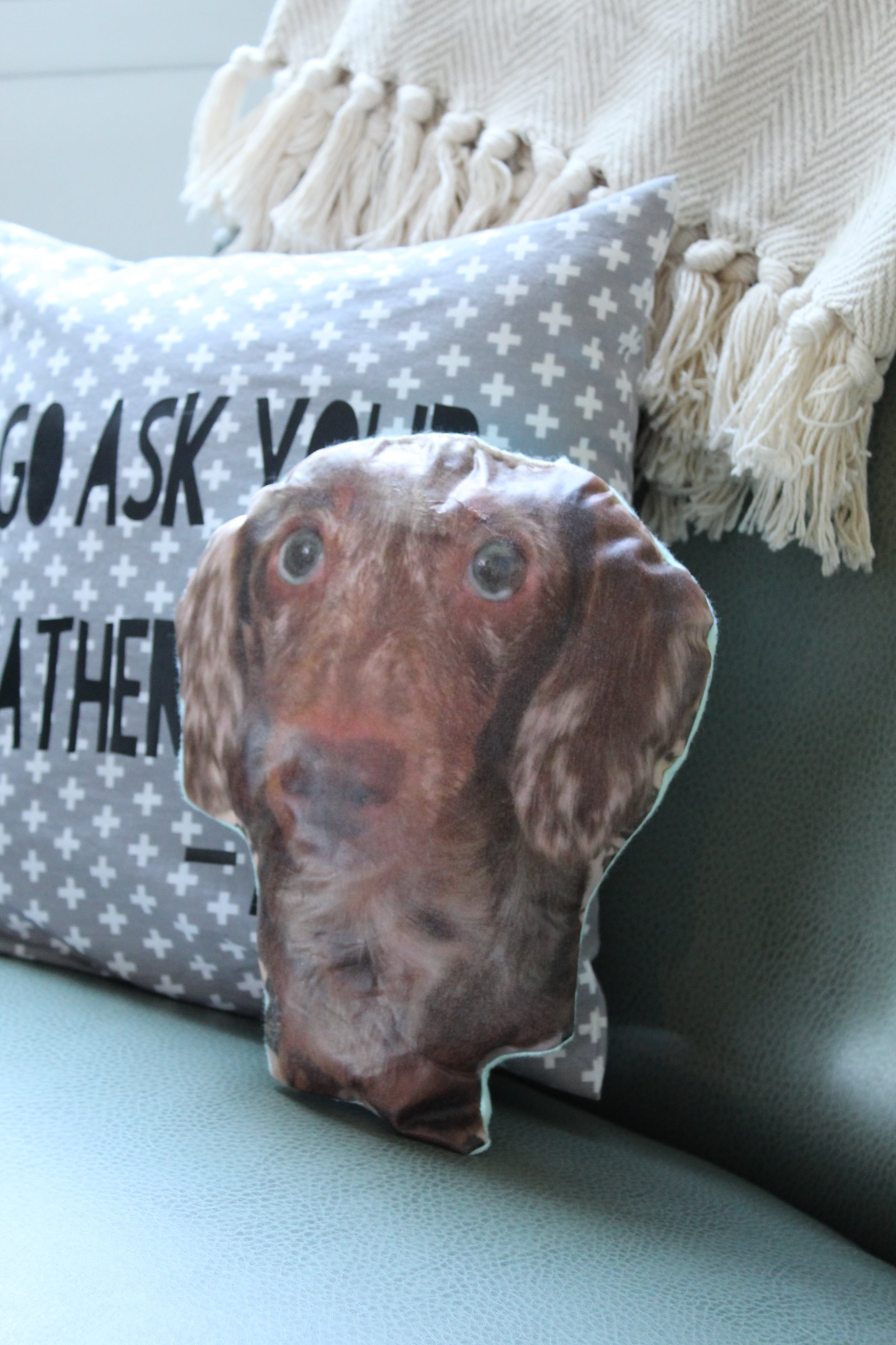 Attention Pet Lovers: You don't want to miss this adorable DIY Pet Portrait Pillow!
